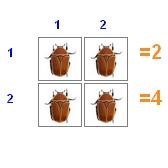 Учимся умножать на 2