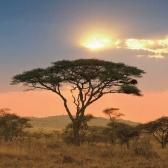 Страны Африки и их столицы. Часть 4