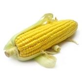 Do you like corn? Yes, I do.