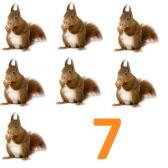 seitsemän - 7