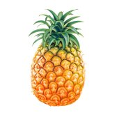pineapple - ананас