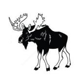 hirvi - лось