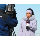dziennikarz - журналист