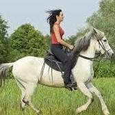 ajo - езда