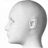 cabeza - голова