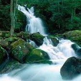 ravine - горная река, ущелье, овраг
