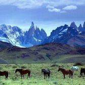 mountain chain - горная цепь