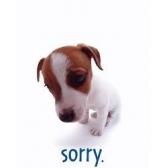 Apologies, gratitude. Извинения, благодарность. Фразы