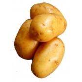 ziemniaki - картошка