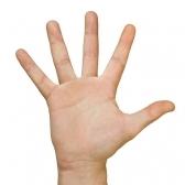 mano - кисть руки