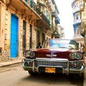 La geografía física de Cuba. Palabras