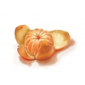 tangherina - мандарин