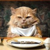 have lunch - обедать