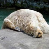 maanantai - понедельник