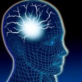 Интеллект: Турнир Всезнайка