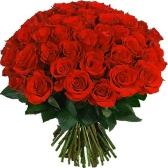 Розы. Иван Бунин