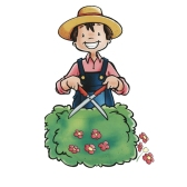 gardener - садовник