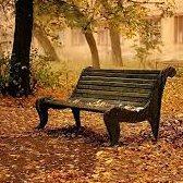 bench - скамейка