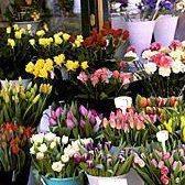 florist - цветочный ларек