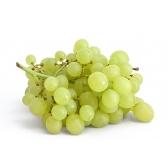 uva - виноград