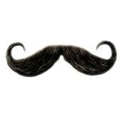 moustache - усы