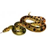 serpente - змея