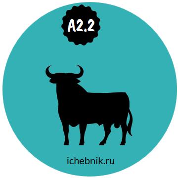 Онлайн-курс «Испанский A2.2»